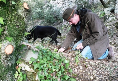 Truffle Hunting in Tuscany and cooking classes