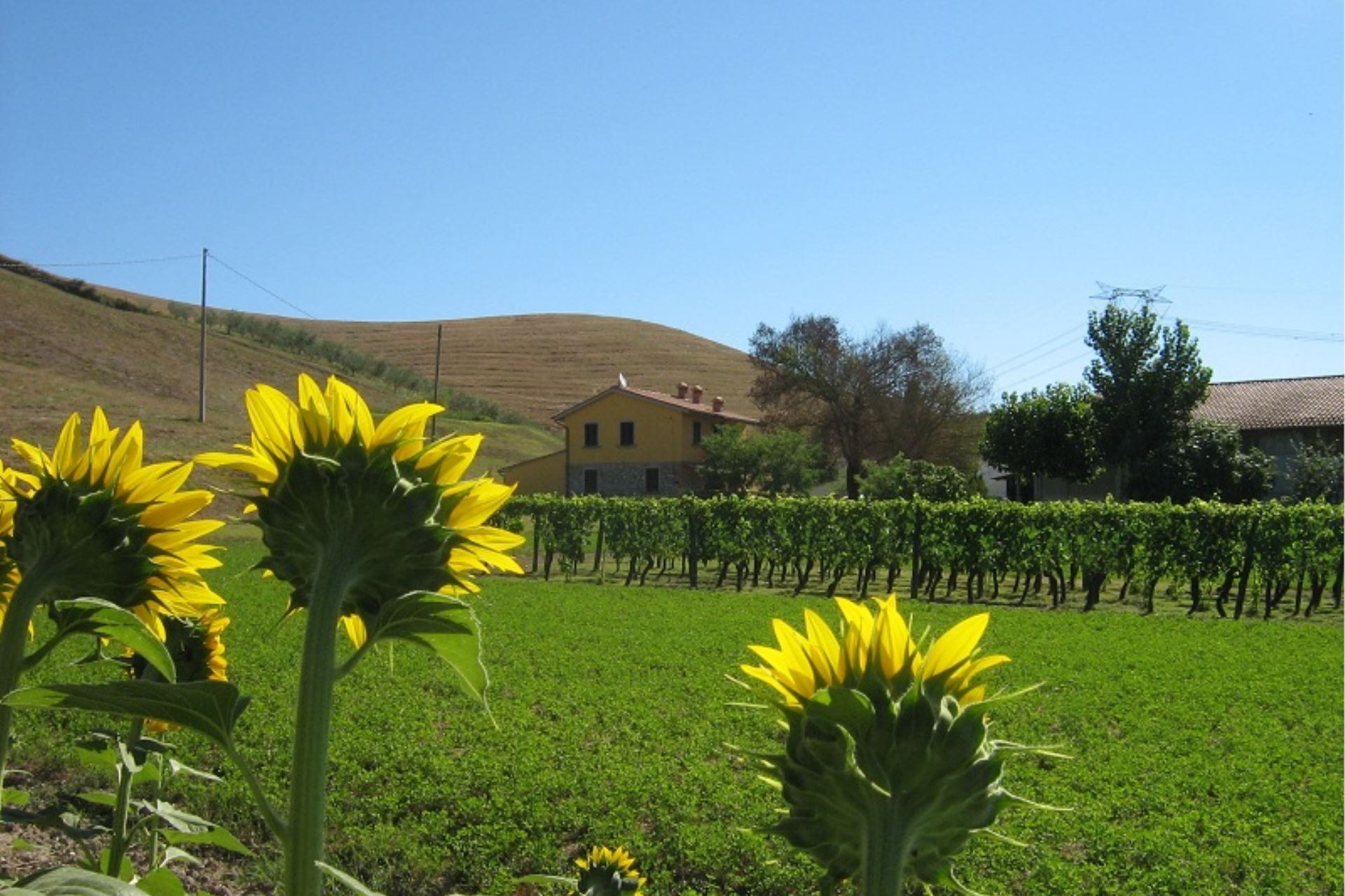 APARTMENTS WITH POOL ONICE VOLTERRA TOSCANA