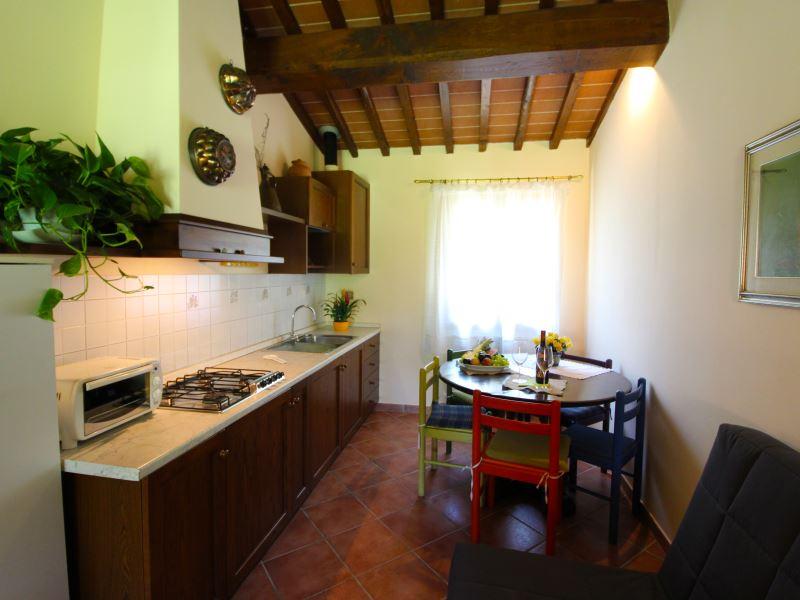 APARTMENTS WITH POOL ORCHIDEA CASTELFRANCO DI SOPRA TOSCANA